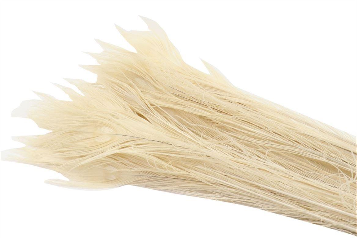 PLUME DE PAON WHITE L90-100 100